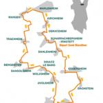 parcours-marathon-vignoble-alsace